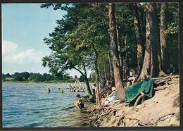 Cpm 0318293 Foret De Tronçais étang De Saint-bonnet - Autres Communes