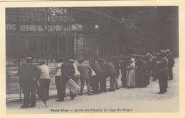 Cp , 75 , PARIS , Jardin Des Plantes , La Cage Aux Singes - Parcs, Jardins