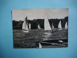 DAMMARIE LES LYS  -  77  -  Les Régates Sur La Seine  -  Seine Et Marne - Dammarie Les Lys