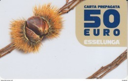 Gift Card Italy ESSELUNGA - Scad.2019 - Castagna - Gift Cards