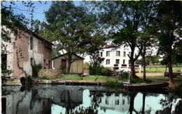 1 Cpsm Cerizay - Vieux Moulin De La Branle - Cerizay