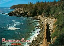 CPSM Acadia-Monument Cove                     L2674 - Etats-Unis