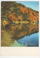 Albert Monier      A 10.056      Le Lac Pavin, Prés De Besse-en-Chandesse - Monier