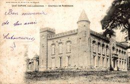 CAPIAN PRES LANGOIRAN CHÂTEAU DE RAMONDON - France