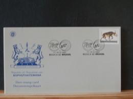 78/557AA  DOC.  BOPHUTHATSWANA - Big Cats (cats Of Prey)
