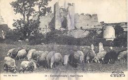 Ansichtskarte Von Constantinoble Aus Dem Jahre  1910 - Türkei