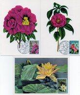 1970  Floralies Gantoises - CM N° 1523/1525 - Maximum Cards