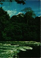 CPM Nationaal Par Raleighvallen-Voltzberg SURINAME (750429) - Surinam