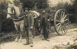 Attelage Cheval  Chevaux Carte Photo Vie Rurale - A Identifier