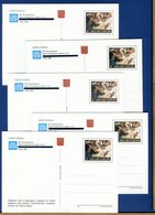 VATICANO - Cartolina  Postale -   1995   FONDAZIONE FAO  -  Con Custodia In Cartoncino - Postwaardestukken