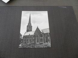 Iseghem - Izegem  :   St. Hiloniuskerk - Izegem