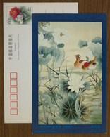 Mandarin Duck,China 2000 Flower & Bird Chinese Painting Postal Stationery Card - Anatre