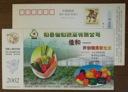 Greenhouse Bell Pepper,cucumber,carrot,CN 02 Jiahe Non-environmental Pollution Vegetable Company Pre-stamped Card - Vegetables