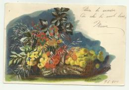 H.WIDMERFEO ILLUSTRATA 1900  - VIAGGIATA FP - Illustrateurs & Photographes