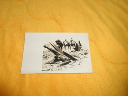 CARTE POSTALE PHOTO ANCIENNE NON CIRCULEE DATE ?. / ANOTATION AU DOS MEGALITHES SAHARA. / MARCEL LAUROY PHOTO MAROC SAHA - Sahara Occidental