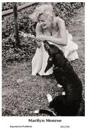 MARILYN MONROE - Film Star Pin Up PHOTO POSTCARD - 201-769 Swiftsure Postcard - Postales