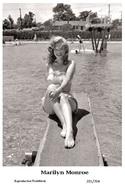 MARILYN MONROE - Film Star Pin Up PHOTO POSTCARD - 201-704 Swiftsure Postcard - Postales