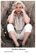 MARILYN MONROE - Film Star Pin Up PHOTO POSTCARD - C33-13 Swiftsure Postcard - Postales