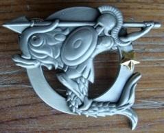 Spécialité Amphibie 1 ETOILE Navire Marine - Marine