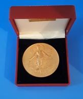 Médaille En Bronze Dorée D'Horticulture: SAINT OUEN - J. GOULMY: Maisons Fleuries: 1er Prix 1985 - Professionals / Firms