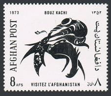 Afghanistan  886, MNH. Michel 1142. Tourist Publicity, 1973. Stylized Buzkashi Horseman. - Afghanistan