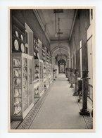 Belgique: Morlanwelz, Musee De Mariemont, La Grande Galerie Des Porcelaines De Tournai (18-2852) - Morlanwelz