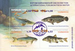 2003 Tajikistan Forum On Fresh Water Fish Poisson  Souvenir Sheet MNH - Tadjikistan