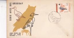 SERIE AVES EL URUGUAY. FDC OBLITERE 1969. URUGUAY -BLEUP - Uruguay