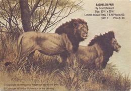 CP - Fantasie - Fantaisie - Leeuwen Lions - Bachelor Pair - Lions