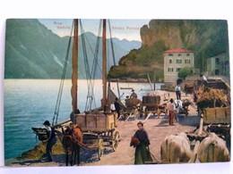 Seltene, Schöne AK Riva Del Garda - Veduta. Strada Ponale. Am Hafen, Eselkarren, Ochsengespann, Segelschiff Am - Italien