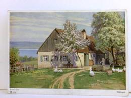 Künstler AK Von Paul Hey. Blütenzeit. Bauernhaus Am See, Gänse Auf Frühlingswiese, Frau Auf Bank, Brunnen - Bücher, Zeitschriften, Comics