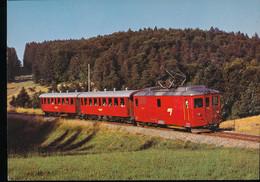 Chemin De Fer Du Jura ( C.J. )  Automotrice Electrique  A Bagages De 4/4 101 Avec Voitures B 721 Et B 723 - Trains