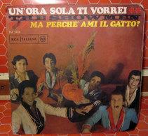 """THE SHOWMEN UN'ORA SOLA TI VORREI  COVER NO VINYL 45 GIRI - 7"""" - Accessori & Bustine"""