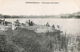 COLOMBO - Kurunega La - Paysage - Sri Lanka (Ceylon)