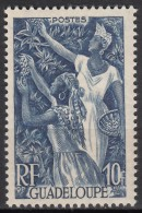 N° 209 - X X - ( C 1374 ) - Guadeloupe (1884-1947)