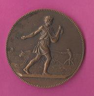 Médaille Semaille & Labour Avec Boeuf Par J.Lagrange Associations Agricoles RF Bronze 60gr Diam 5.6cm - Autres