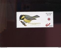 Belgie 2015 Buzin Zwarte Mees Birds 17/4/2017 SPAB Attenhoven DUOSTAMP ZONDER TUSSENPERFORATIE - Private Stamps