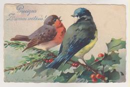 C.Klein.Birds.HWB Edition Nr.2220 - Klein, Catharina