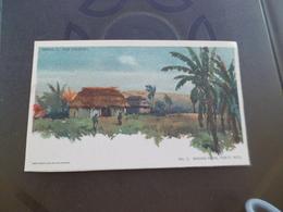 CPA En Américain Porto Rico Banana Farm Serie Our Colonies - Cartes Postales