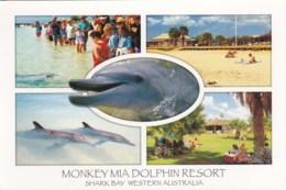 Monkey Mia Dolphin Resort, Shark Bay, Western Australia - Unused - Australia