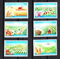 Romania  -  1982. Campo Di Grano, Orti,  Disinfestazione, Raccolta Latte, Wheat Field, Vegetable, Disinfestation, Milk - Agricoltura