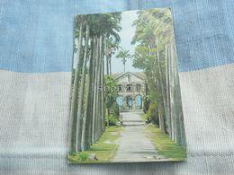 Codrington College St John Barbados - Cartoline