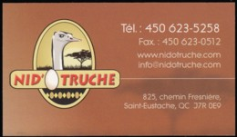 Nid' O Truche (*) (VC398) - Visiting Cards