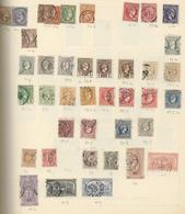 Nachlässe: Nachlass In 13 Alten Schaubek Vordruckschwarten Und 2 Steckalben, Dabei Schweiz Mit Schön - Stamps