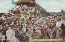 USA - CP 1911 - WILD FLOWER EXCURSION - COLORADO MIDLAND RY/1 - Etats-Unis