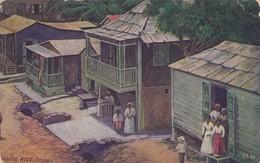 USA - CP 1910 - CATEY PORTO RICO /1 - Verenigde Staten