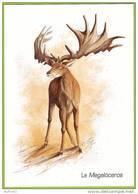 Megaloceros - Elan Irlandais Géant / Giant Irish Elk (Pleistocene). Animal Préhistorique Prehistoric Animal. Préhistoire - Animaux & Faune