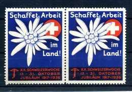 "ERINNOFILIA / ""Schaffet Arbeit Im Land! 1936"" Coppia - Erinnofilia"