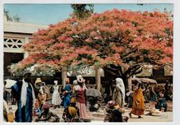 L' AFRIQUE   EN COULEURS    MARCHANDES  SOUS  UN  FLAMBOYANT                 2  SCAN            (VIAGGIATA) - Uganda