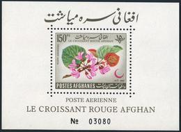 Afghanistan C28a,MNH Damaged Gum.Michel 693 Bl.30. Red Crescent 1962.Blossoms. - Afghanistan